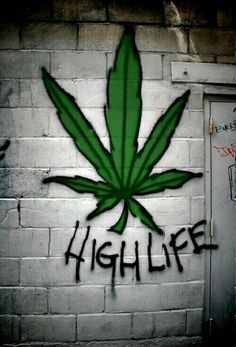 Fight :Depression,cancer,Epilepsy Seizures,back and joints pain,insomnia,Asthma , just to name a few with some top she CANNABIS OIlS and top shelf Marijuana strains. Natural herbal medication can heal the world,Life time regular plug .Asap Call or text :+1 720-599-6470 Email: blakeanderson521@gmail.com