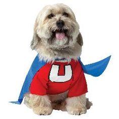 Underdog Pet Costume - Large