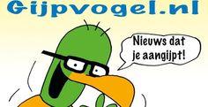 De Gijpvogel, een hele verre achterneef van ex-profvoetballer en analist René van der Gijp, lanceert samen met tekenaar Toon van Driel en Metro zijn eigen website: www.gijpvogel.nl.