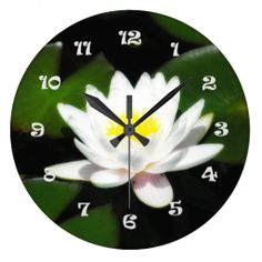 White Water Lily Round Wall Clock $33.95 White Water Lily Round Wall Clock is photography captured from a Midwest Illinois garden pond. It's a close up view of a single large white lily with a yellow center. The background is the dark green lily leaves from the capture. The clock numbers are printed in white.