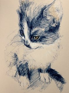 cat drawing- unknown artist.  Really lovely