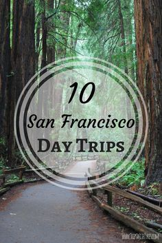 Top 10 Family-Friendly Day Trips near San Francisco: Northern California destinations with a short drive of the Bay Area perfect for kids.