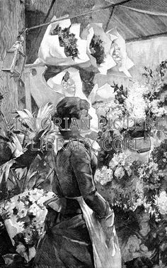 Florist's. Charming Victorian illustration of a florist wearing an apron standing in her shop against a background of flowers: bunches of flowers and bouquets wrapped in paper are  on tall shelves, and more flowers  stand in buckets. Download high quality jpeg for just £5. Perfect for framing, logos, letterheads, and greetings cards.