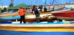 Imbarcazioni e pescatori di piccola pesca costiera sull'arenile di Schiavonea!