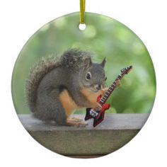 Squirrel Playing Electric Guitar Post Cards today price drop and special promotion. Get The best buyThis Deals Squirrel Playing Electric Guitar Post Cards today easy to Shops & Purchase Online - transferred directly secure and trusted checkout. Nursery Rhymes Songs, Classic Nursery Rhymes, Cute Squirrel, Squirrels, Squirrel Memes, Raccoons, Rodents, Funny Animals, Cute Animals