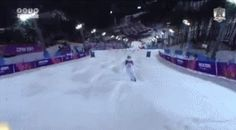 These 12 Memes Are the Real Champs of the Sochi Olympics | This is what it would look like if the Olympics took place during the Battle of Hoth, and we're not just Tauntan.   | WIRED.com