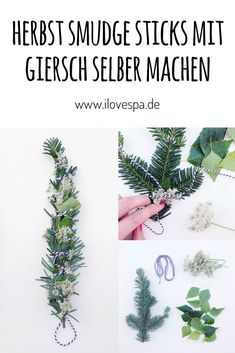 DIY Smudge Sticks im Herbst – Räucherbündel selber machen - New Ideas Wicca, Magick, Green Witchcraft, Spiritual Path, Smudge Sticks, Book Of Shadows, Diy Projects To Try, Natural World, Cactus Plants