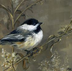 Oil painting of a chickadee by Alyssa Watters