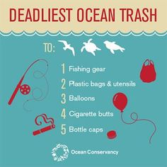 These Are the Most Dangerous Kinds of Plastic Polluting the Ocean | TakePart
