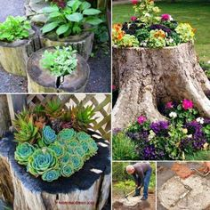 Tree Stump Ideas 32