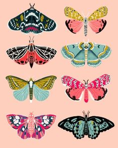 Lepidoptery No. 1 by Andrea Lauren Art Print by andrealaurendesign - Lepidoptery No. 1 by Andrea Lauren Art Print by Andrea Lauren Design Art Papillon, Illustrations, Illustration Art, Butterfly Illustration, Posca Art, Insect Art, Guache, Butterfly Art, Butterfly Painting