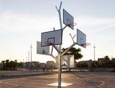 Basket Ball Tree