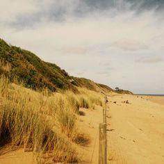 So good to return to the Australian surf coast... Sand dunes of Anglesea Victoria #sanddunes #greatoceanroad #australiancoast #natura #nature #anglesea #victoria #victoriaaustralia #surfbeach #myaustralia by leeleee16