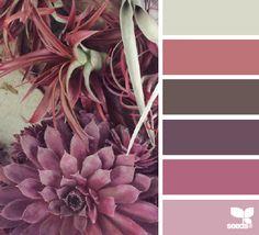 succulent tones by Design Seeds Colour Pallette, Colour Schemes, Color Patterns, Color Combos, Pantone, Design Seeds, Palette Design, Cactus E Suculentas, Color Balance