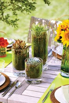 An assortment of succulents in Illusion Vases. #DebiLillyDesign #Safeway #entertaining