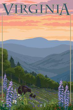 Virginia - Black Bear & Cubs Spring Flowers - Lantern Press Poster