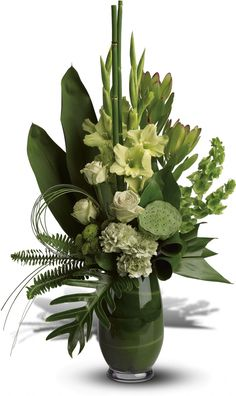 Order Limelight Bouquet from H. Cannon Floral & Greenhouses, Inc., your local Arlington florist. Send Limelight Bouquet for fresh and fast flower delivery throughout Arlington, TX area. Tropical Flowers, Tropical Flower Arrangements, Church Flower Arrangements, Exotic Flowers, Green Flowers, Beautiful Flowers, Gladiolus Arrangements, Contemporary Flower Arrangements, Green Rose