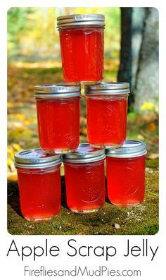 apple scrap jelly- I love this idea...I make applesauce every fall.  Now I can do something other than compost the peels!