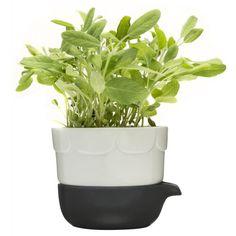 Sagaform Green Herb Pot - Sage Green