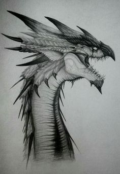 Rathalos by exnexus monster hunter know your meme Monster Hunter Art, Monster Art, Pencil Art Drawings, Cool Art Drawings, Art Drawings Sketches, Cool Dragon Drawings, Dragon Head Drawing, Drawing Art, Creature Concept Art