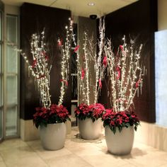 Birch trees with warm white LED lights, recycled glass icicles and red clip on cardinals. Live red Poinsettias massed at the base. #BotanicalDesigns