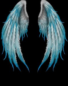 wow this is getting closer to my wings Angel Wings Art, Angel Wings Painting, Angel Wings Drawing, Angel Art, Fallen Angel Wings, Studio Background Images, Background Images For Editing, Black Background Images, Photo Background Images
