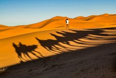 Пустыня Сахара. Фотограф Диана Тирских. Москва.