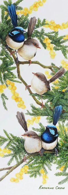 Katherine Castle - fabulous artist Bird Artists, Bird Wallpaper, Wood Carving Art, Australian Animals, Art N Craft, Watercolor Bird, Art For Art Sake, Exotic Birds, Cool Paintings
