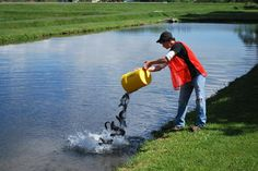 stocking your own pond with fish.