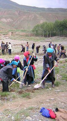 Working Tibetan women photo via Athur Braverman Theravada Buddhism, Feeling Happy, Make Sense, Decision Making, Yoga Meditation, Family Life, Discovery, Buddha, Spirituality