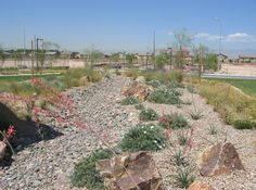 residential common areas can be water efficient like this one at Ardiente in Las Vegas