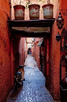 Marrakesh Medina alley. Who the heck waters those pots on top lol. Well they're green and alive.
