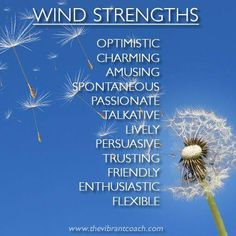 Elements Of The Star Signs - Wind Strengths
