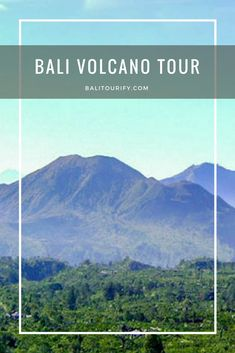 Kintamani Volcano Bali Tour is one among the full day tours packages in Bali to visit Kintamani.   Kintamani is a village positioned in the north-eastern area of Bali island that provides an excellent view of the active volcano (Mount Batur) and the Batur Lake (the major lake in Bali, Indonesia).     Kintamani Tour is also commonly called Bali Volcano Tour, it is one of the most favorite one day trip in Bali for both locals and foreigners.