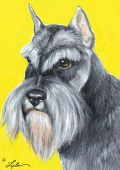 Schnauzer Breed, Schnauzer Puppy, Miniature Schnauzer, Dog Store, Dog Pin, Doge, Animals And Pets, Dog Breeds, Cute Babies