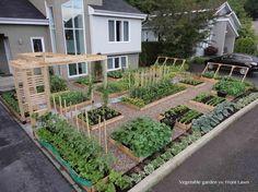 Vegetable Garden | http://garden-interior.blogspot.com