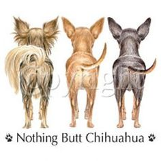Chihuahua's are the best :)) this would make a cute bumper sticker :)