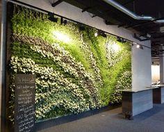 Koleksiyon green wall