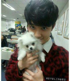 Kyungsoo, D.O. my pocket D.O. my Doobie, My DooBeeDoooBeeeDoooo:)