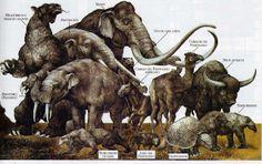EVOLUCIÓN: LA EXTINCIÓN DE LA MEGAFAUNA AMERICANA DEL PLEISTOCENO.