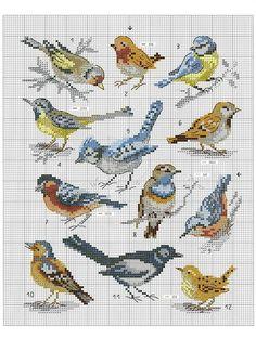 Birds, butterflies and small cross-stitch animals ОбсуждениÐ . Birds, butterflies and small cross-stitch animals ОбсуждениÐ …. Small Cross Stitch, Cross Stitch Bird, Cross Stitch Animals, Counted Cross Stitch Patterns, Cross Stitch Charts, Cross Stitch Designs, Cross Stitching, Cross Stitch Embroidery, Embroidery Patterns