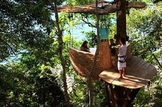Feast Among The Trees At This Dining Pod In Thailand