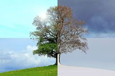 Money saving strategies for a comfortable autumn and a wealthy winter. Why saving money in summer is important.
