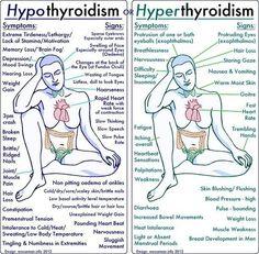 Diet Plan for Hypothyroidism - The difference between Hypothyroidism vs Hyperthyroidism.) Diet Plan for Hypothyroidism - Thyrotropin levels and risk of fatal coronary heart disease: the HUNT study. Hyperthyroidism Symptoms, Hypothyroidism Diet, Thyroid Symptoms, Gestational Hypertension, Disease Symptoms, Autoimmune Disease, Nursing School Notes, Nursing Schools, Graves Disease