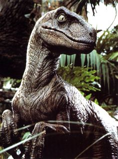 Velociraptor Jurassic world. Has anyone else noticed that most of the dinosaurs are exactly the same color?