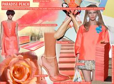 SS 2015 Women's Key Color, Paradise Peach