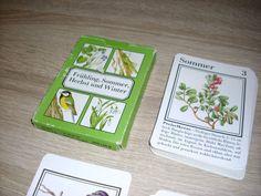Frühling Sommer Herbst u Winter Peterspiel unbenutzte Karten Altenburg DDR