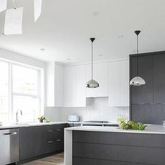 Modern Black and White KItchen with Black Pantry Cabinets
