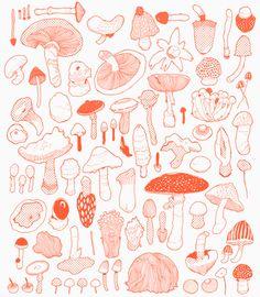 mushroom print