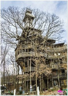 Casas del rbol on pinterest tree houses treehouse and for La casa mas grande del mundo